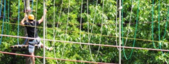 atrakcje w parku linowym